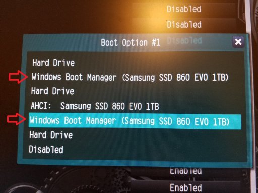 DUAL BOOT MANAGER in BIOS.jpg