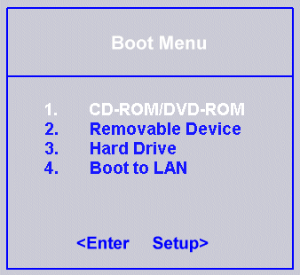 BIOS boot menu option