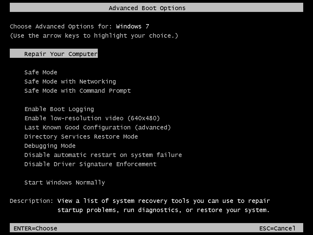 Accessing the Advanced Boot Options menu
